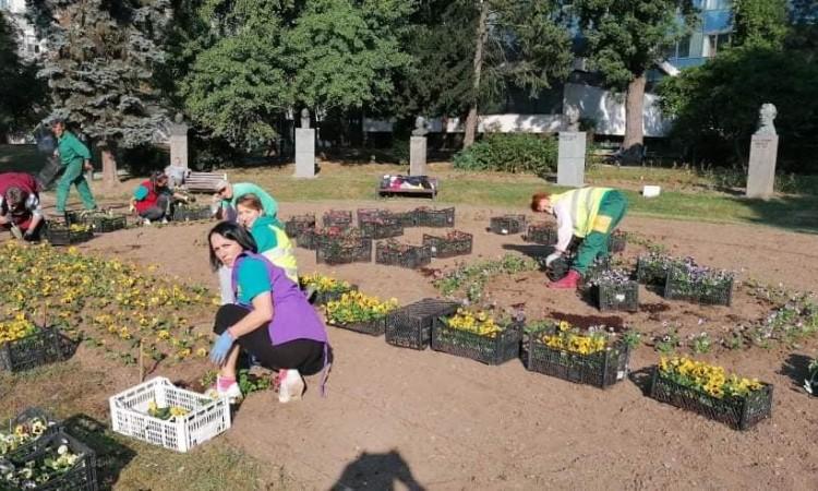 """KJKP """"Park"""" – Počelo cvjetno jesenje ukrašavanje sarajevskih zelenih površina"""
